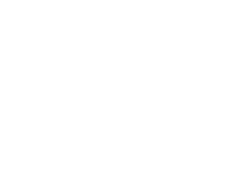 Official Selection - 2017 Action On Film International Film Festival